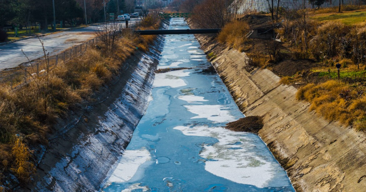 How does a Wastewater Treatment Plant protect our Water?
