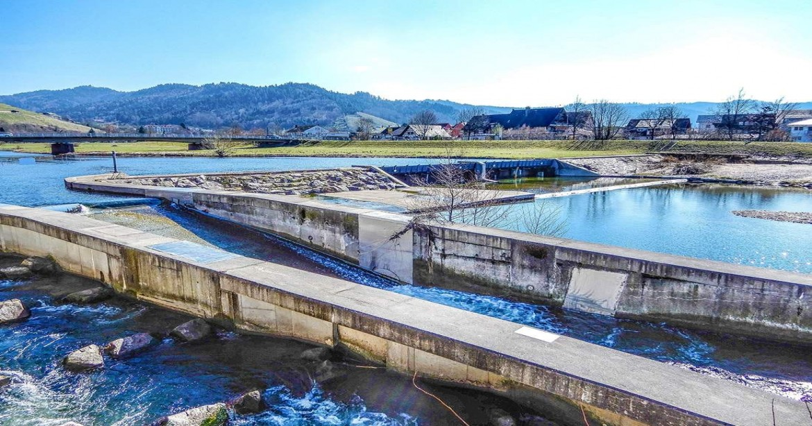 Knowing the Effects of Wastewater on the Environment